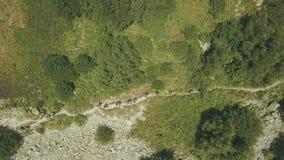 Mening van boven wandelingsgroep het lopen op bergsleep Het beklimmen van een berg stock video