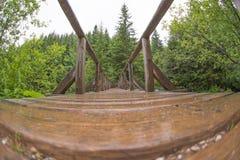 Mening van brug - fisheye vervorming Stock Foto