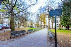Mening van Chapman Square in Portland van de binnenstad Royalty-vrije Stock Foto