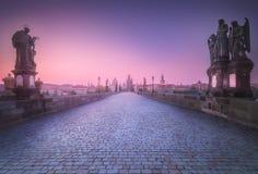 Mening van Charles-brug Praag, Tsjechische Republiek royalty-vrije stock afbeelding