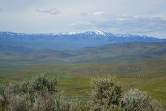 Mening van Crane Creek, Idaho royalty-vrije stock foto