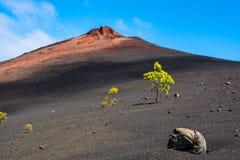 Mening van de Arena's Negras dichtbij vulkaan Teide, het Nationale Pari van Teide Stock Foto
