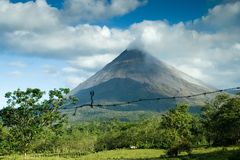 Mening van de Arenal vulkaan Stock Foto's