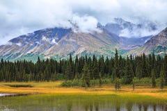 Mening van de Bergketen Van Alaska in Denali stock fotografie