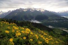 Mening van de bergvallei royalty-vrije stock fotografie