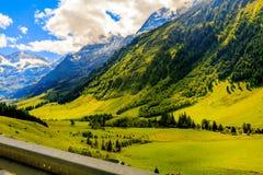 Mening van de de bergweide de rustige zomer van alpen Stock Foto