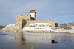 Mening van de bewolkte maart ochtend van kasteelherman Narva Royalty-vrije Stock Foto's