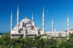 Mening van de Blauwe Moskee in Istanboel, Turkije Stock Afbeeldingen