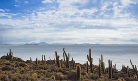 Mening van de Boliviaanse zoute vlakten Stock Afbeelding