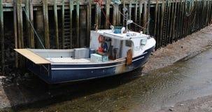 Mening van de boot van de zalenhaven 4k bij hoogtijd stock videobeelden