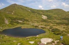 Mening van de Carpatian de groene berg Stock Afbeelding