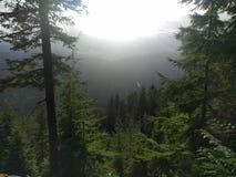 Mening van de Cascades Stock Foto