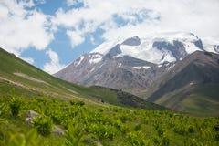 Mening van de de bergvalleien en pieken Stock Fotografie