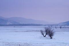 Mening van de de winterbergen van de hoogste Tsjechische berg - Snezka Royalty-vrije Stock Afbeelding