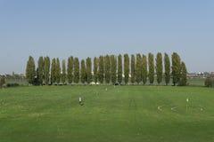 Mening van de golfcursus met een aantal populieren royalty-vrije stock foto's