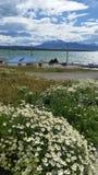 Mening van de haven en de bergen van Puerto Natales dichtbij Torres del Paine National Park, Patagonië Chili Royalty-vrije Stock Foto