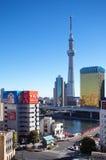 Mening van de Hemelboom van Tokyo Royalty-vrije Stock Foto's