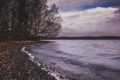 Mening van de de herfst de donkere oever van het meer met ophelderende hemel Royalty-vrije Stock Afbeeldingen