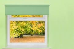 Mening van de herfstbomen Royalty-vrije Stock Fotografie
