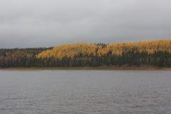 Mening van de herfstrivier met de kust Stock Foto's