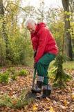 Mening van de herfstwerken in een tuin Royalty-vrije Stock Foto