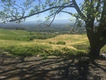 Mening van de heuvels van Hogere Siërra Rd, San Jose Stock Afbeelding