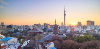 Mening van de horizon van Tokyo bij schemering Royalty-vrije Stock Afbeeldingen