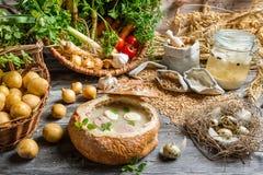 Mening van de ingrediënten voor eigengemaakte zure soep Stock Foto's