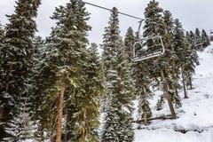 Mening van de kabelbaan van de de skitoevlucht van Hatsvali Khatsvali in de winter Kabels, sneeuw in het bos en berg Ushba Mestia Royalty-vrije Stock Afbeelding