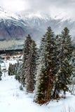 Mening van de kabelbaan van de de skitoevlucht van Hatsvali Khatsvali in de winter Kabels, sneeuw in het bos en berg Ushba Mestia Royalty-vrije Stock Fotografie