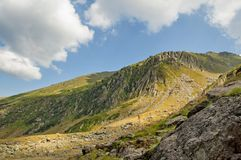 Mening van de Karpaten de tweede-langste bergketen in Europa Stock Fotografie