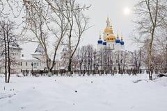 Mening van de Kathedraal Sofia-Uspensky in Tobolsk Stock Afbeelding