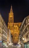 Mening van de Kathedraal van Straatsburg Stock Afbeeldingen