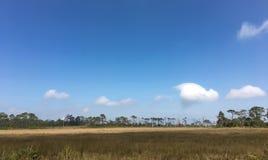 Mening van de landschaps de blauwe hemel en een troosteloos weidegebied stock foto