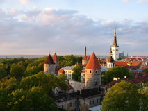 Mening van de Oude Stad van Tallinn Royalty-vrije Stock Foto