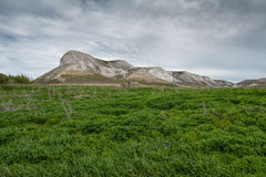 Mening van de Rode berg, of het Merrie` s hoofd, krijtbergen in de Don River-vallei, Donskoy-park Stock Foto
