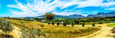 Mening van de Slanghoekberge-Bergketen waarlangs de Bainskloof-Paslooppas tussen de steden Ceres en Wellington royalty-vrije stock afbeeldingen