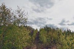 Mening van de stad van Nizhny Tagil vanaf de bovenkant van de berg Royalty-vrije Stock Fotografie