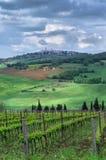Mening van de stad van Pienza Toscanië, Italië Stock Afbeelding