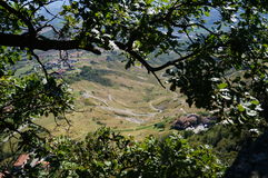 Mening van de stad, San Marino, bomen Royalty-vrije Stock Fotografie
