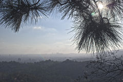 Mening van de stad van Los Angeles in Californië, Verenigde Staten van Stock Afbeeldingen