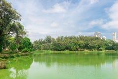 Mening van de stadswolkenkrabbers van het Aclimacao-Park stock foto