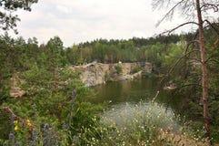 Mening van de steile bank van de canion en het meer, wildflowers Stock Fotografie