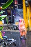Mening van de straat in de oude stad van Hoi An, Vietnam in regendag Royalty-vrije Stock Fotografie