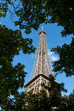 Mening van de toren van Eiffel door bomen Royalty-vrije Stock Afbeelding
