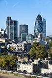 Mening van de Toren van Londen en de Augurk Royalty-vrije Stock Afbeeldingen