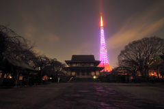 Mening van de Toren van Tokyo. Stock Afbeelding