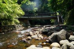 Mening van de verse stroom van de rivierstroom, steenbank en natuurlijke rotscascade met lichte glans rond groene bomen en brug i Royalty-vrije Stock Foto's