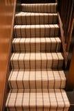 Mening van de voet van een moderne beklede trap Royalty-vrije Stock Afbeeldingen
