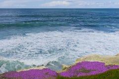 Mening van de Vreedzame Oceaan Royalty-vrije Stock Afbeeldingen